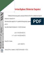 M_todo_de_Newton-Raphson.pdf
