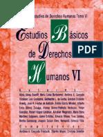 ESTUDIOS BASICOS DE DERECHOS HUMANOS - TOMO VI.pdf
