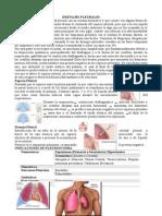 Drenajes Pleurales y mas docx