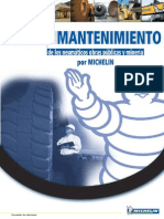 Guide_Maintenance_Esp_04.pdf