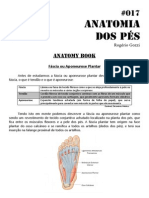 017 - Anatomy book - Anatomia dos Pés.pdf