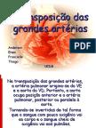 Transposição Das Grandes Artérias, Ppt