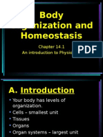 ch 14 1 body organization and homeostasis
