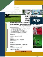 Proyecto Empresarial - Pisco El Santorin