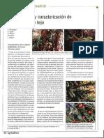 TEJO pdf.pdf