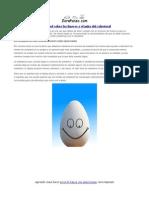 La Verdad Sobre Los Huevos y El Mito Del Colesterol