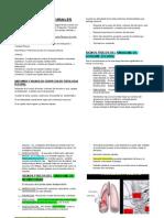 SINDROMES PLEURALES.docx
