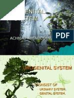 UROGENITAL SYSTEM.ppt