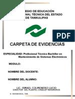 Carpeta_PTB. Mantenimiento de Sistemas Electronicos (2015)