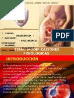 Presentación1B1 EXPOB1.pptx