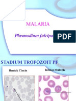 Prak.Falciparum+vivax slide berjalan.PPT