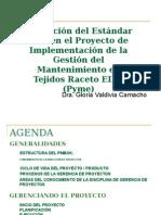 Aplicaci+¦n del Est+índar PMI en Proy Mtto