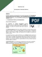 PRACTICA 10 soluciones.docx