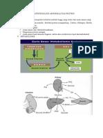 Patofisisologi Abnormalitas Protein