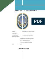 LA-MINERÍA-PERUANA (2)