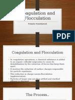 Coagulation and Flocculation Prista