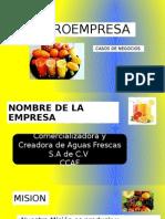 microempresa (1)