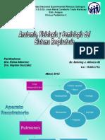 92311025 Anatomia y Fisiologia Respiratoria