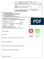 Prueba Escrita de Cta 4 Biomoléculas Inorgánicas