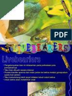 5. Livebearers.ppt