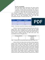 Patofisiologi OAB Incompatibility