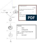 Process Text