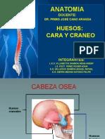 huesos-131206183122-phpapp01