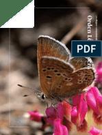 Lepidoptera_Libro_Rojo_Invertebrados_Andalucia.pdf