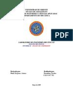 Labii Informe 2 Compresión