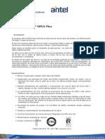 Caracteristicas IP MPLS Plus.doc