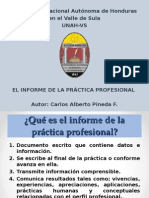 Informe de Practica Profesional Mejorado