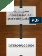 Exposicion Principios procesales.pdf