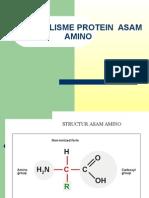 Metabolisme Protein Asam Amino-12