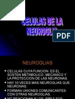 Celulas de La Neuroglia (2) (1)
