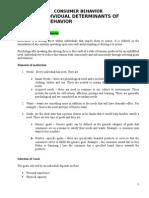 Individual Determinants in Consumer Behaviour (Autosaved)