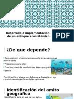 Modulo IV (2).pptx