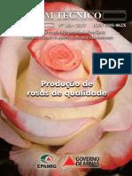 Produção de Rosas de Qualidade