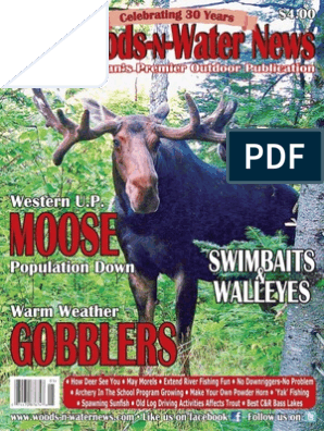05-15   Moose   Hunting