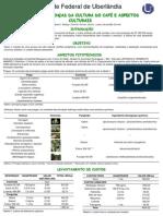Analise_Cafeeiro.pdf