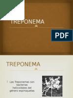 TREPONEMA.pptx