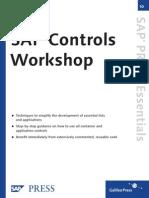 SAP Controls - Workshops