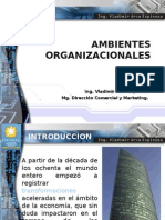 Ambientes Org 1 Tema