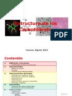 Estructura de Carbohidratos