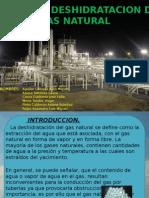 Deshidratacion del Gas Natural.pptx