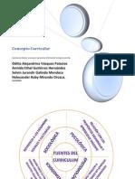 CONCEPTO CURRICULAR.pdf