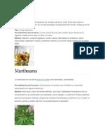 5 tipos de drogas.docx