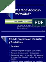 Plan de Accion de Paraguay