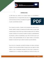 Tesis Aplicacioìn de La Eìtica Profesional en La Tecnologiìa(1)
