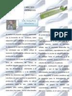 Mercado meta.pdf