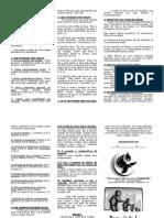 Folheto de Consolidação